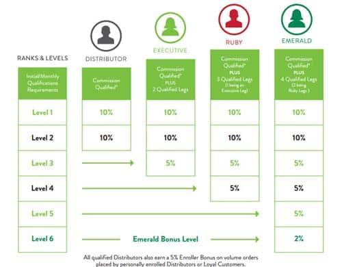 It Works management Compensation Plan chart