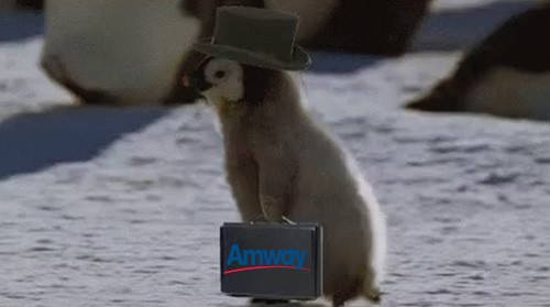Amway penguin