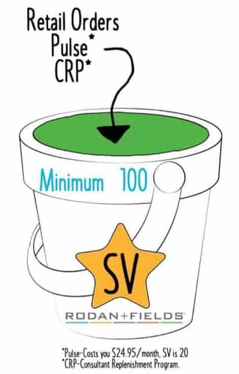 100 SV bucket Rodan and Fields