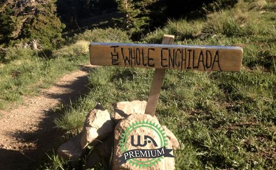 Wealthy Affiliate Premium - the whole enchilada
