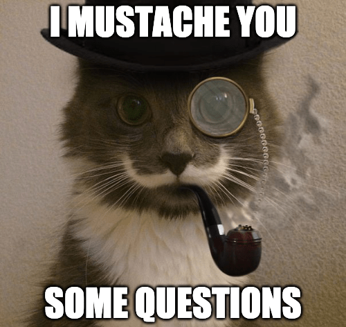 mustache you questions